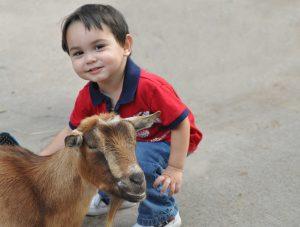 Get to know our goats! (Photo: Kathy Newton)
