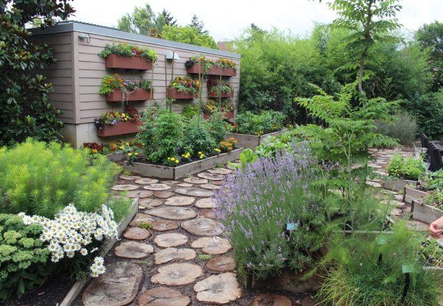 A lovely combined veggie-pollinator garden