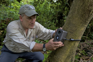 Dr. Alan Rabinowitz, CEO of Panthera, installs a camera trap. (Photo: Steve Winter)