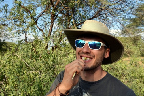 Brian brushes his teeth with a Salvadora twig (Photo: Shasta Bray)