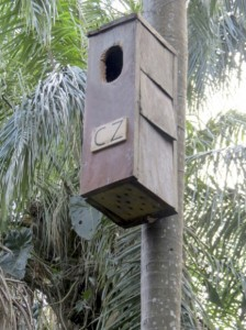 Nest Box Sponsored by the Cincinnati Zoo