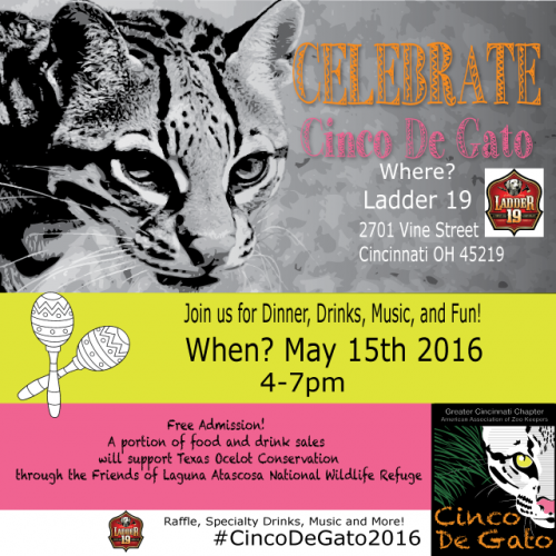 CincoDeGatoPoster_2Edit