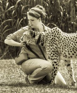 Sara the cheetah with her trainer, Colleen (Photo: Linda Castaneda)