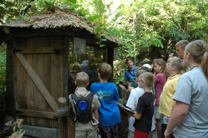 Discovery Forest shaman hut