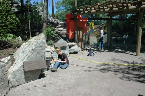 Cougar exhibit construction