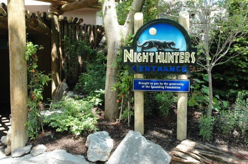 Night Hunters entrance sign