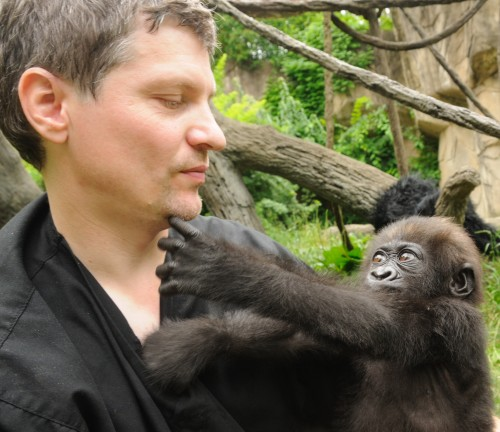 Zoo Keeper Eric High with baby gorilla Gladys.