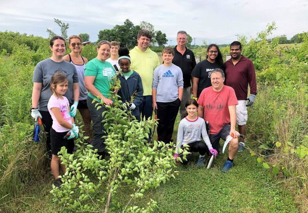 Family Community Service group removing invasive species at Bowyer Farm