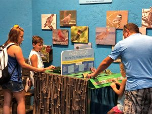 Guests play a game in Wings of the World. (Photo: Shasta Bray)