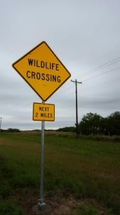 Hwy 186 Wildlife Crossing Sign (Photo: U.S. Fish and Wildlife Service)