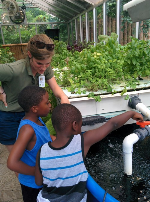 Sustainability Intern Mary Sticklen teaches guests about aquaponics during the 1:30pm Keeper Chat.