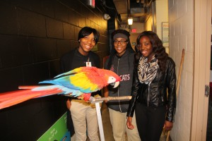 Some of my classmates meeting a macaw at the Bird House