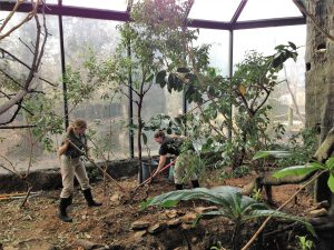 Upgrading the bird habitats (Photo: Shasta Bray)