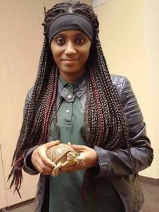 Kadriesha turtle pic