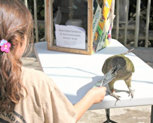 A kea collects a dollar donation from a guest.