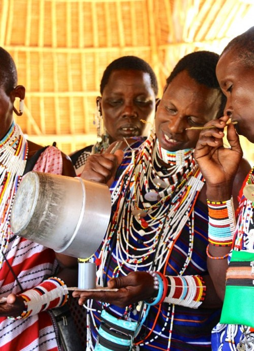 Maasai women involved in the beekeeping enterprise (Photo: Rebuilding the Pride)