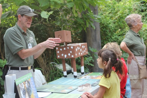 Cat Canyon keeper, Mike Land, talks to visitors about tigers (Photo: Crissi Lanier)