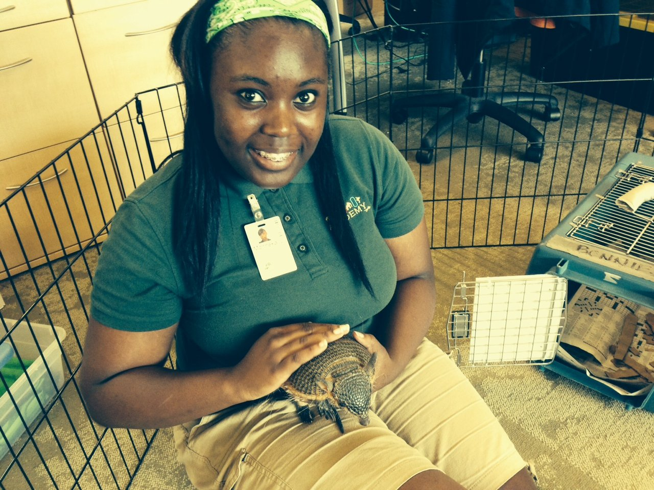 Soon to graduate, Monneka Johnson socializes Bonnie, a screaming hairy armadillo, during her Education lab. (Photo: Shasta Bray)