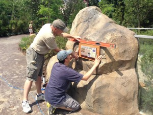 Installing the signs at the bat-eared fox exhibit.