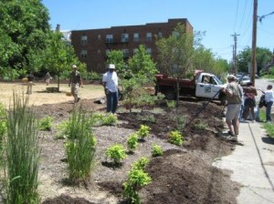 Zoo Staff, Avendue District Residents and Volunteers work to turn the vacant lot into a community park.