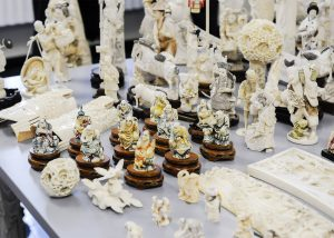 Seized ivory to be crushed (Photo: NYDEC)