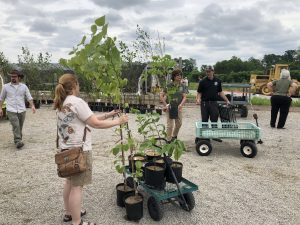 Native plant sale at Bowyer Farm (Photo: Shasta Bray)