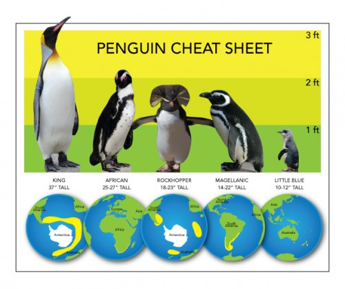 Penguin-cheat-sheet