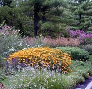 Pollinator garden at the Zoo