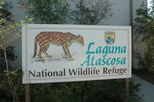 Laguna Atascosa National Wildlife Refuge
