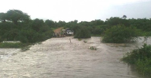 The Ruaha River overflowed its banks and made travel dangerous in the region. (Photo: Ruaha Carnivore Project)