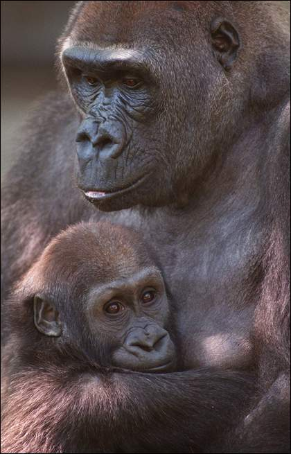Samantha and her son, Samson