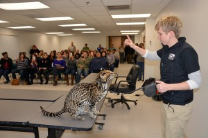 Cameron County employees meet Sihil