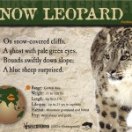 Snow Leopard ID sign
