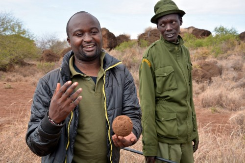 Abrehem shows us a dung beetle ball (Photo: Shasta Bray)