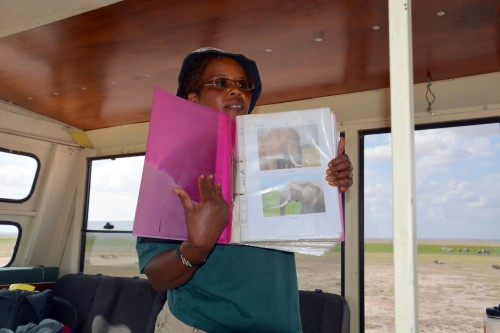 Norah with the Amboseli Elephant Research Project explains how they identify individual elephants by their ears (Photo: Shasta Bray)