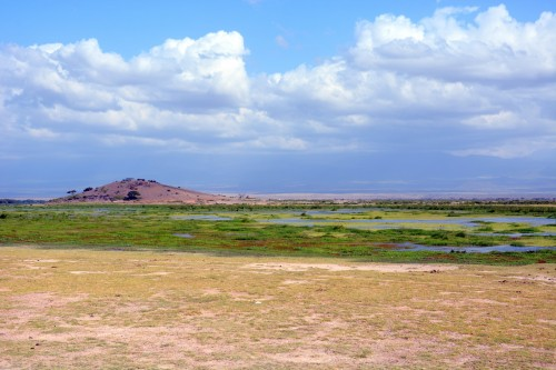 Observation Hill and the surrounding swamp in Amboseli National Park (Photo: Shasta Bray)
