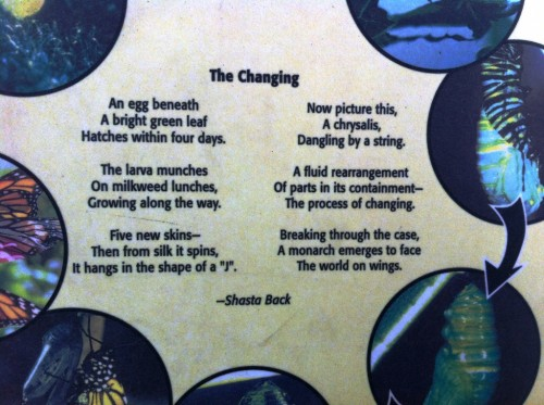 The Changing, on a sign in the Butterfly Garden
