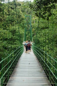 Crossing the river at La Selva Biological Station