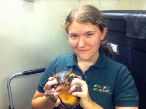 Here I am with Bonnie, the screaming hairy armadillo