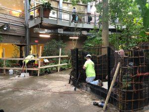 Sloth habitat undergoing renovation (Photo: Shasta Bray)
