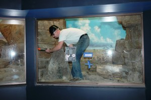 Sealing the window edges of the fennec fox exhibit
