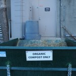 These green bins sit outside areas where the organic waste is collected