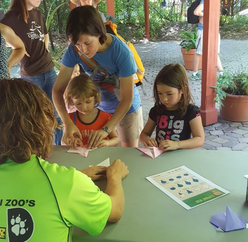 Zoo guests folding origami elephants (Photo: Jill Bailey)