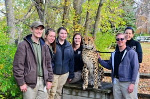 Fall 2014 interns hanging out with Tommy the cheetah.