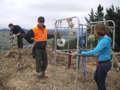 Setting up the kea diversionary frame at the St Arnaud logging site  with John Henderson – DOC, Brady Clements – Boar Logging, Meg Selby – Natureland Zoo (Photo: Andrea Goodman)