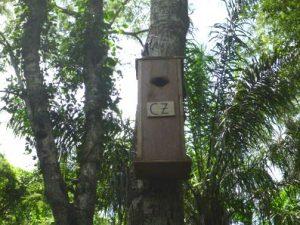 Cincinnati Zoo-sponsored next box (Photo: Armonia)