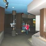 ocelot hallway2