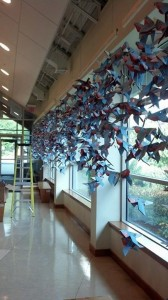 Paper passenger pigeons hanging in the Education Center lobby