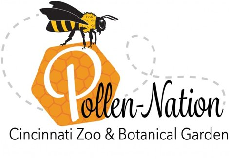pollen nation logo