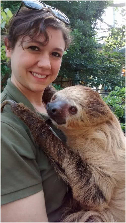 Sarah with Moe, the two-toed sloth